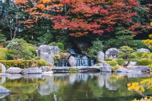 cultiver son jardin au japon avec les cours de japonais de jakinola à Bayonne